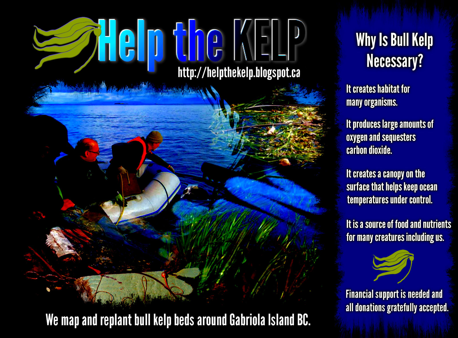 Why is bull kelp necessary?