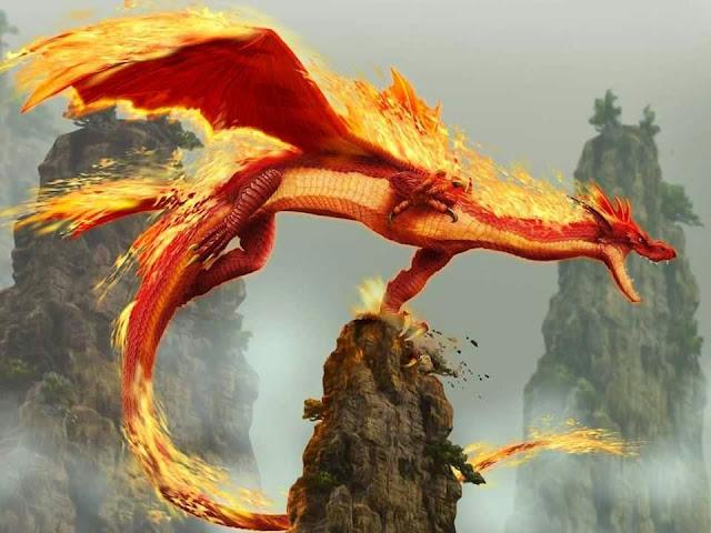 Gambar Naga - Hewan Misterius di Dunia