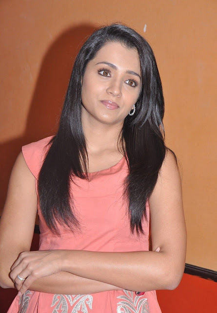 Trisha picture gallery