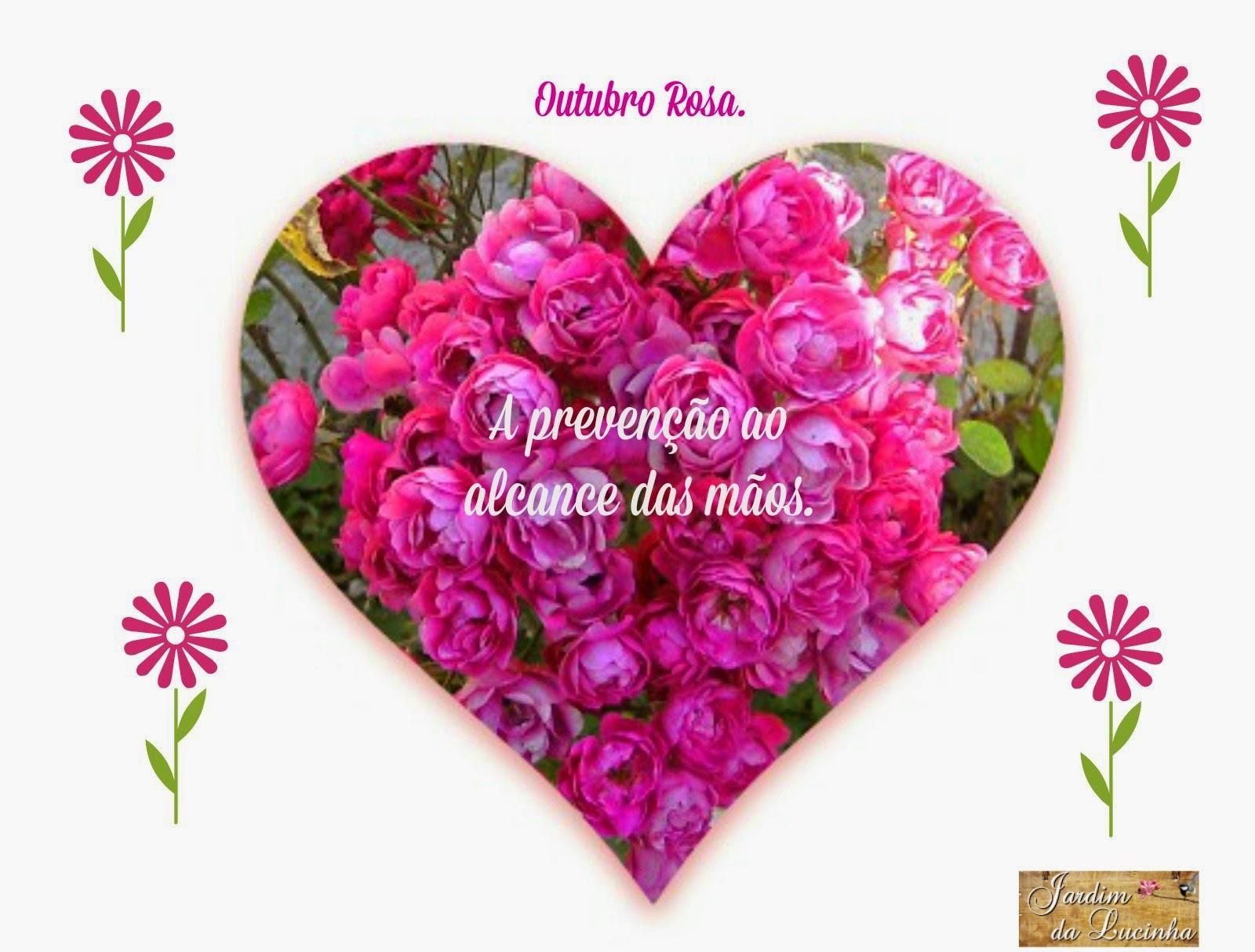 rosas no jardim de deus : rosas no jardim de deus:Jardim da Lucinha: Outubro Rosa no Jardim + Desabafo + Brincando com a