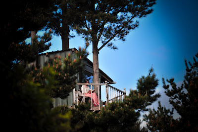 Tree House New Zealand