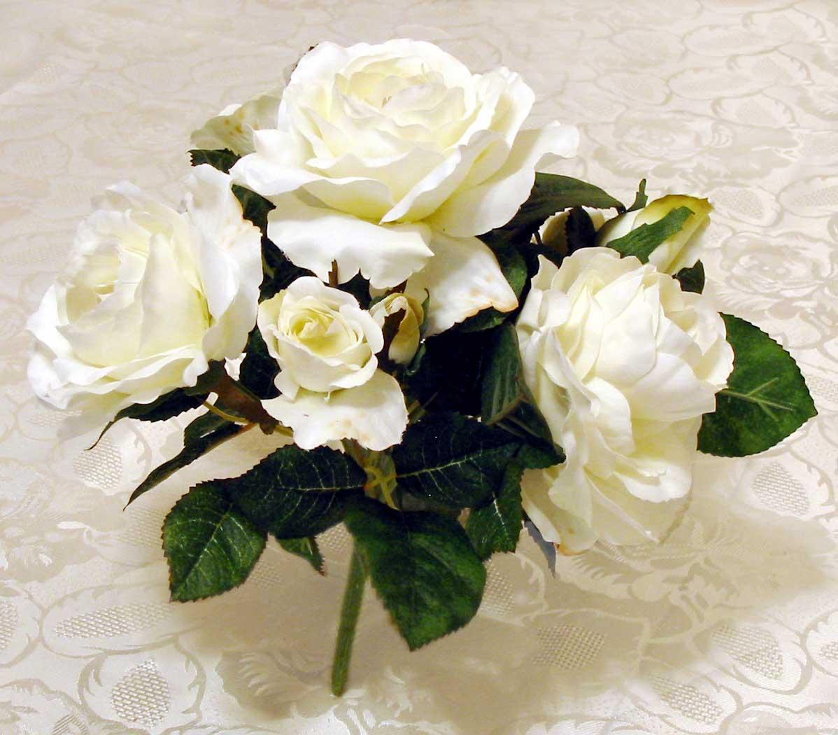 white rose flowers - photo #5