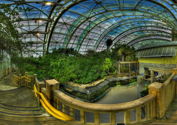 Zoozooreview Florida Aquarium