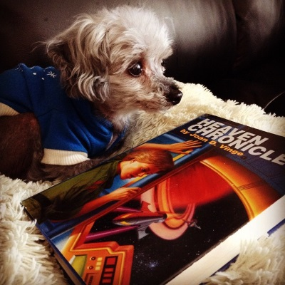 Murchie lays on his fuzzy pillow. He wears a blue hoodie with white trim, and has a mournful expression on his face. In front of him at an angle is a hardcover copy of Heaven Chronicles. The cover features a terrible painting of a short-haired white woman peering around a window frame through which we see a rocket ship flying towards a ringed planet. Or she could be doing something else entirely with the window frame. The picture is that terrible.
