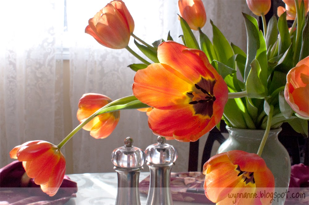 Fresh tulips in a sunny window | Wynn Anne's Meanderings