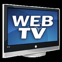 VEDERE LA TV SUL WEB