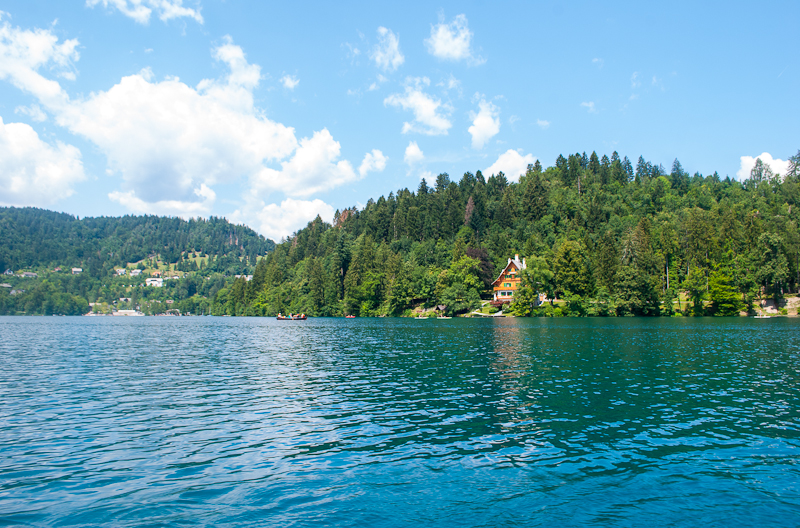 Image of lake bled in the summer , bled slovenia
