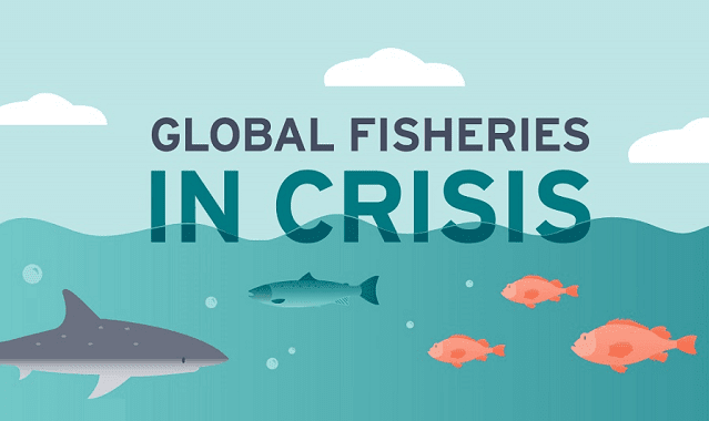 Global Fisheries in Crisis