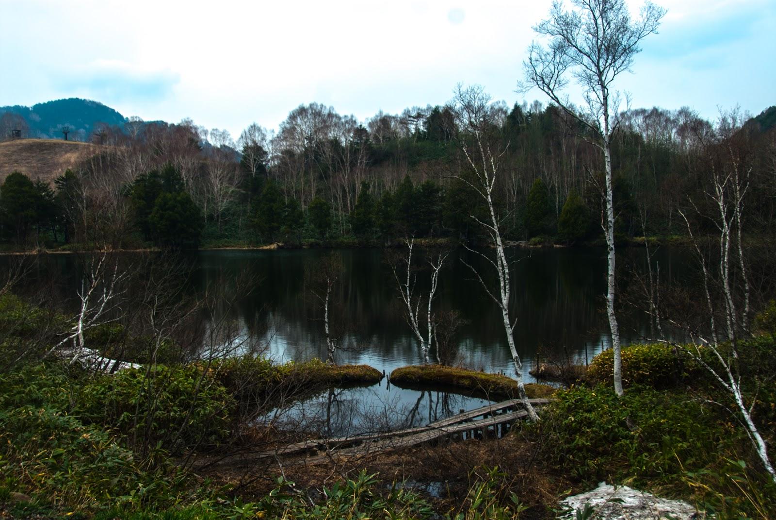 とても綺麗な池