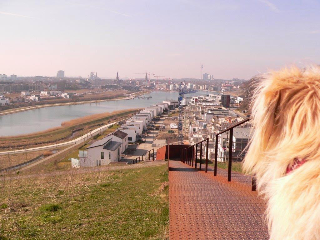 Dortmund Ruhrpott See Ausflug Tipp Frühling Aussicht