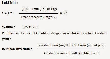 Laporan Pendahuluan Chronic Kidney Disease (CKD)/ Gagal Ginjal Kronik