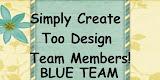 SCT Design Teams