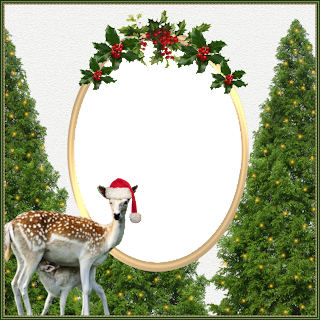FRAME 20 CHRISTMAS 2013   -   FREEBIE