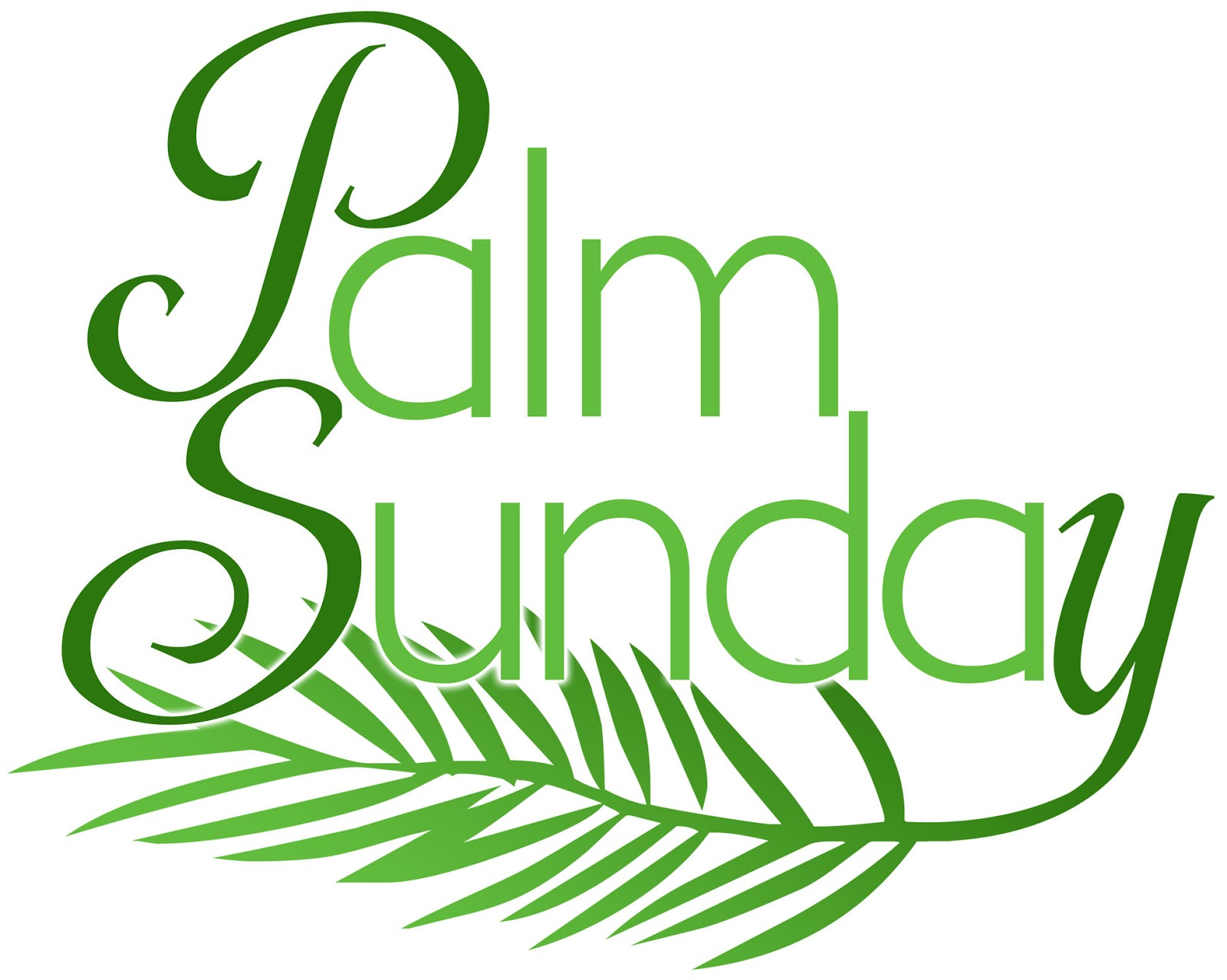 palm silhouette big island hawaii wallpapers - Palm Silhouette Big Island Hawaii Wallpapers HD