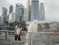 me and merlion