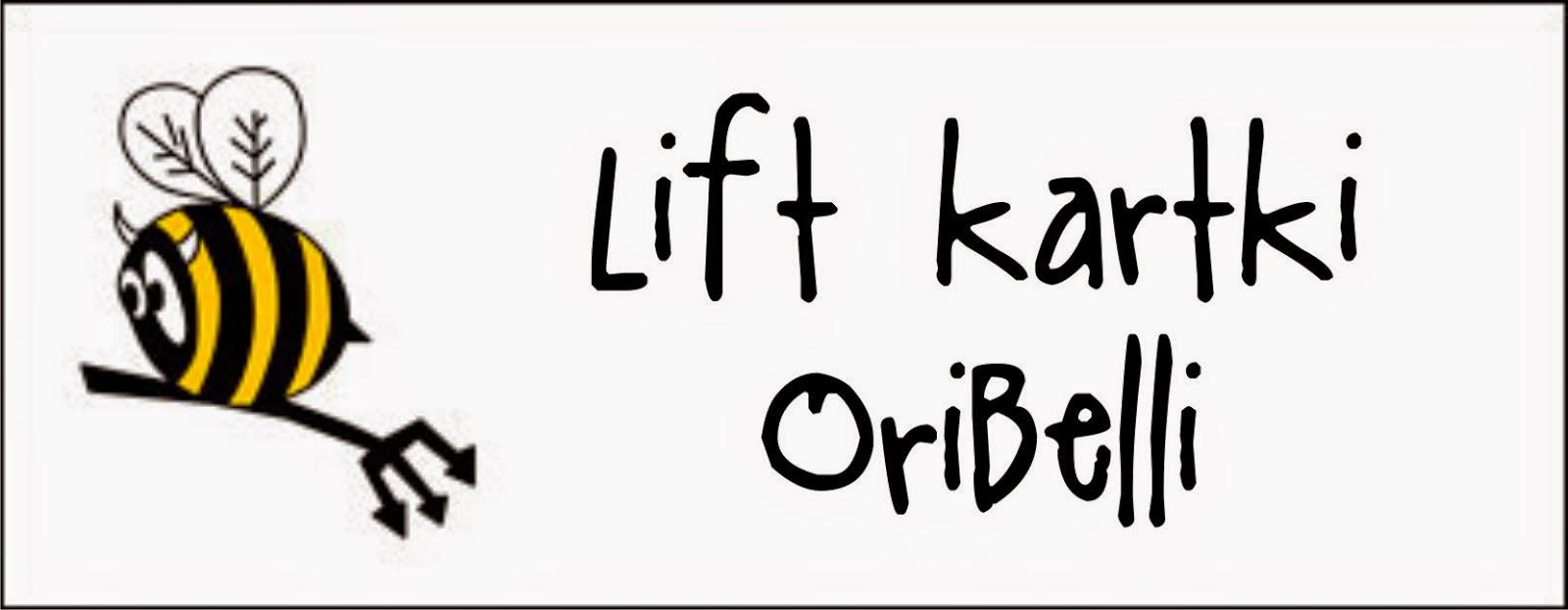 http://diabelskimlyn.blogspot.com/2014/04/lift-kartki-oribelli.html