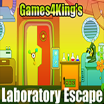 Games4King Laboratory Escape
