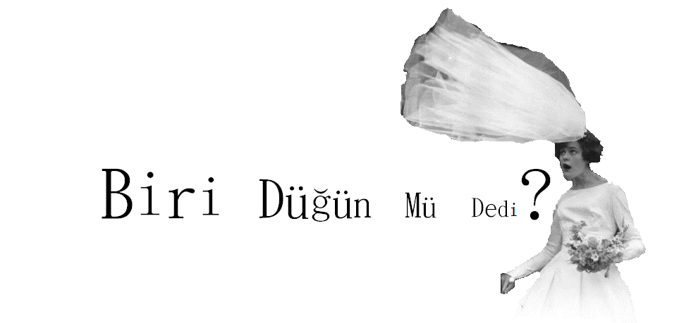 Biri Dügün Mü Dedi?
