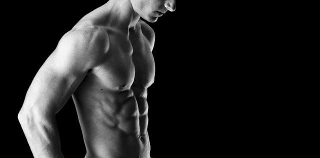 Musculos y aparato locomotor