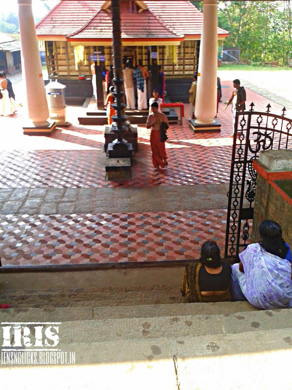 Pannayur Kavu (Temple), Kadambur, Ambalapar, Ottapalam, Kerala