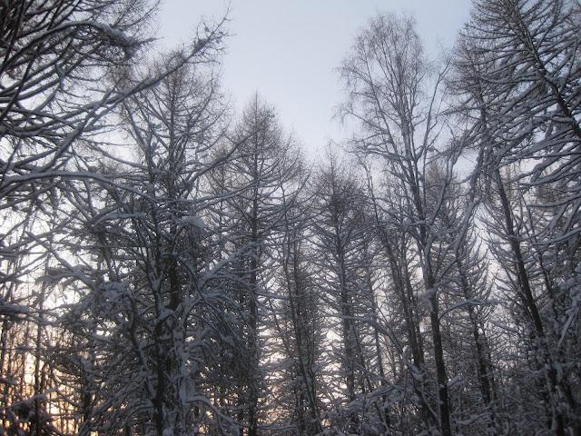jyväskylä talvella