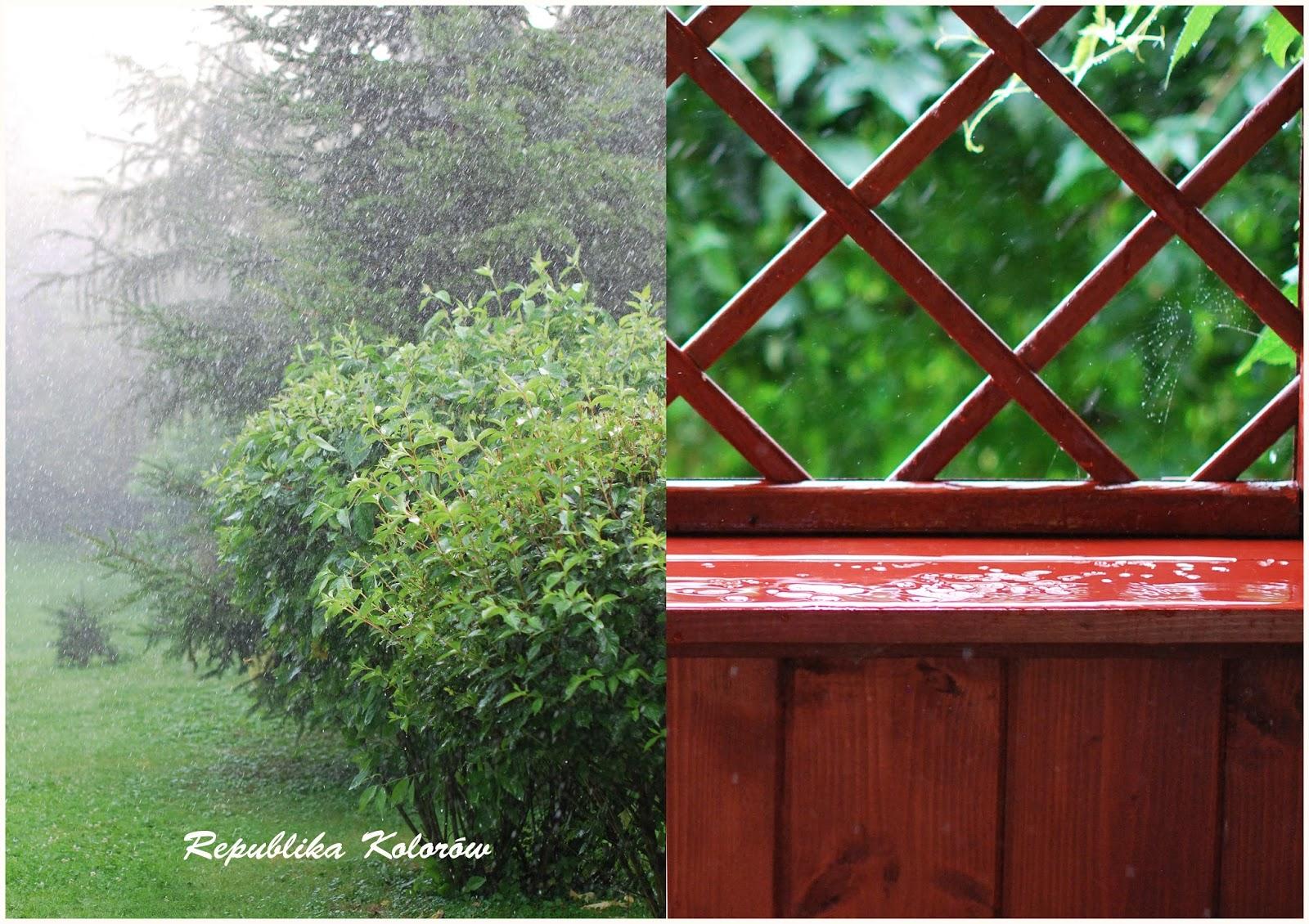 taras w deszczu
