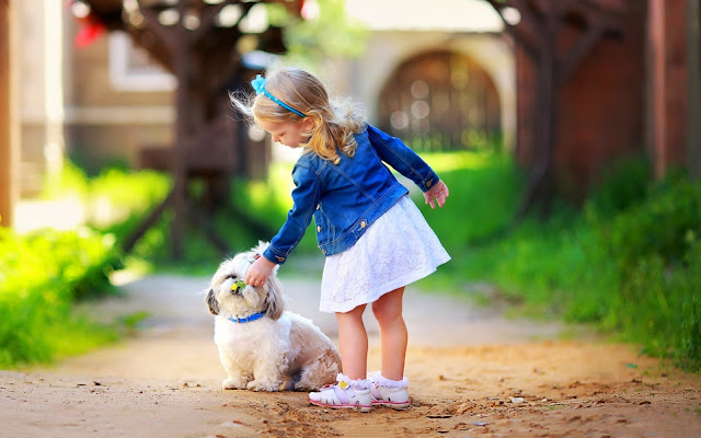Cute Little Girl Play White Dog