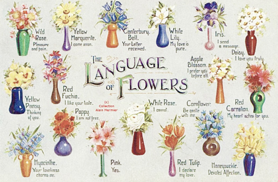 Observations from a simple life behind every bouquet of flowers i enjoyed the language of flowers simply because i love flowers and the victorian meanings behind them it was an easy book to read izmirmasajfo