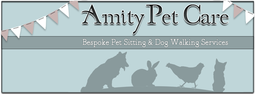 Amity Pet Care Blog