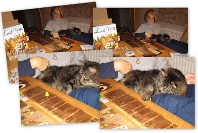 Last Will - The cat was really getting into the game!