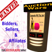 Auction Wars