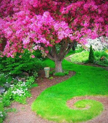 jardin-secreto