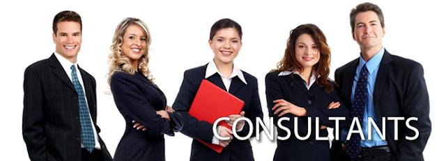 Consultant Profile