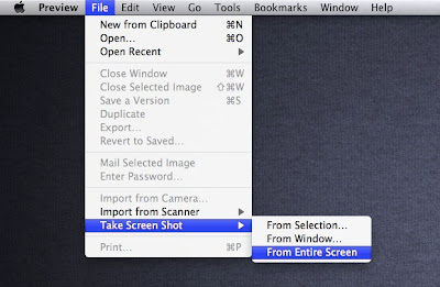 Capture Screen in Mac OS X Lion