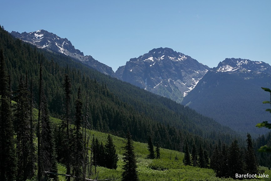 Dosewallips trail