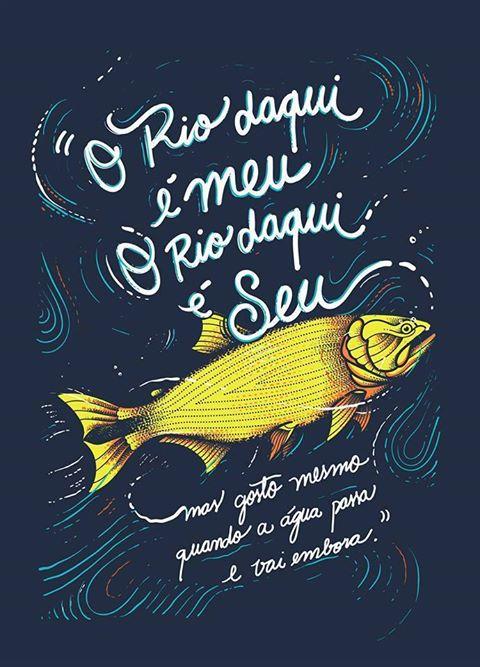 Piraju, o peixe Dourado