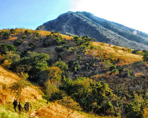Baluran, Banyuwangi