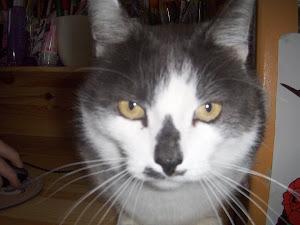 Mimi (R.I.P)