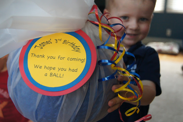 Ball_pit_birthday_party favors