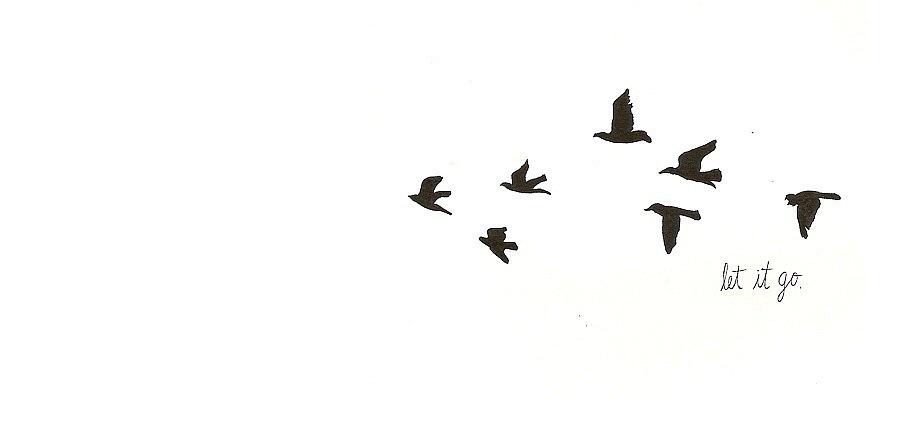 in birds