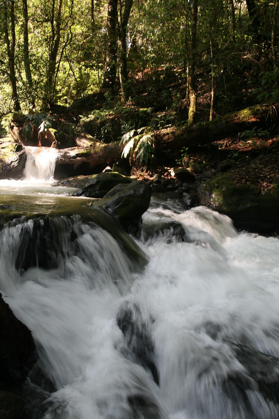 Cascada El Molino