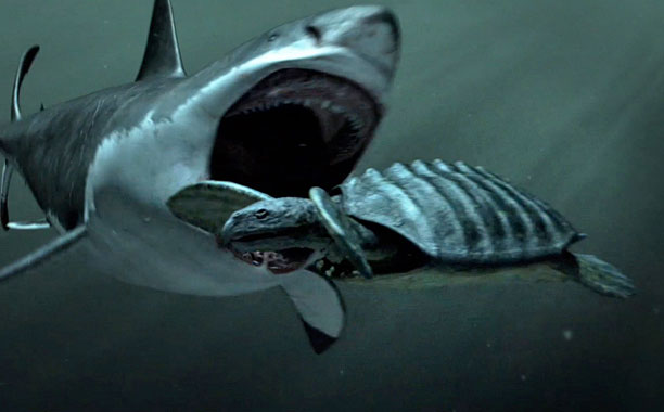 with Thinus: Discovery Channel heavily criticised for fake Megalodon