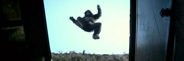 Bigfoot jumping from above in Exists (2014)