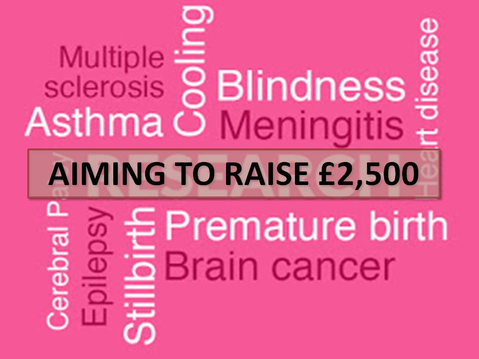 FUNDRAISING SUPPORT: