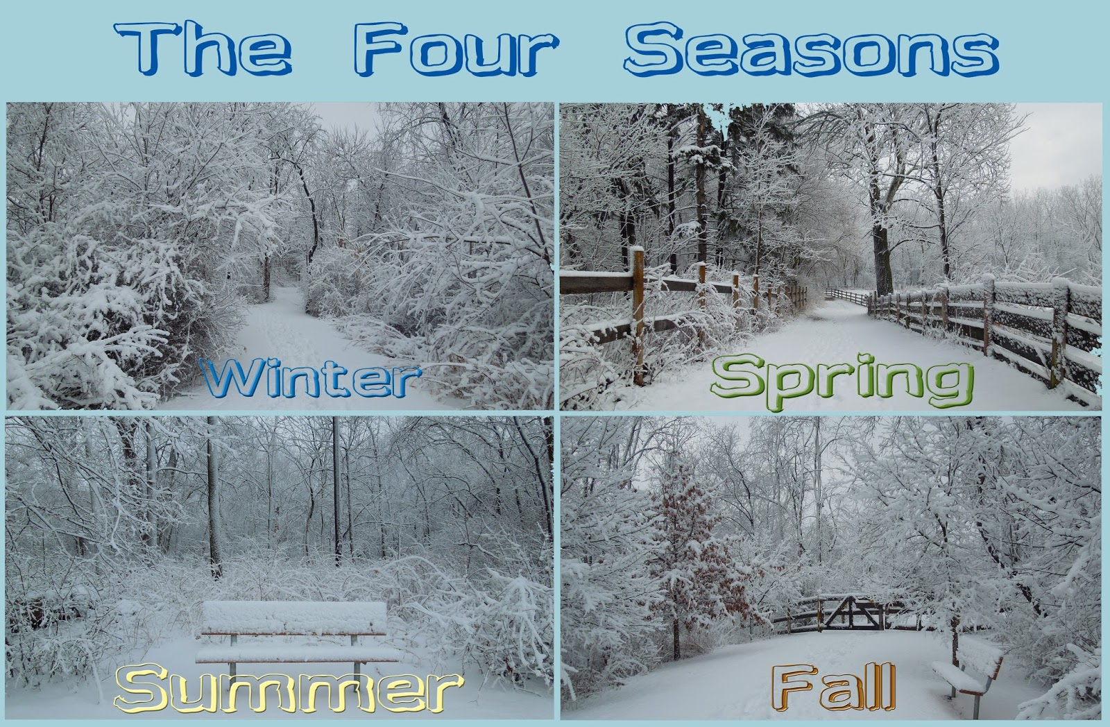 Four Seasons, The - Just In Time