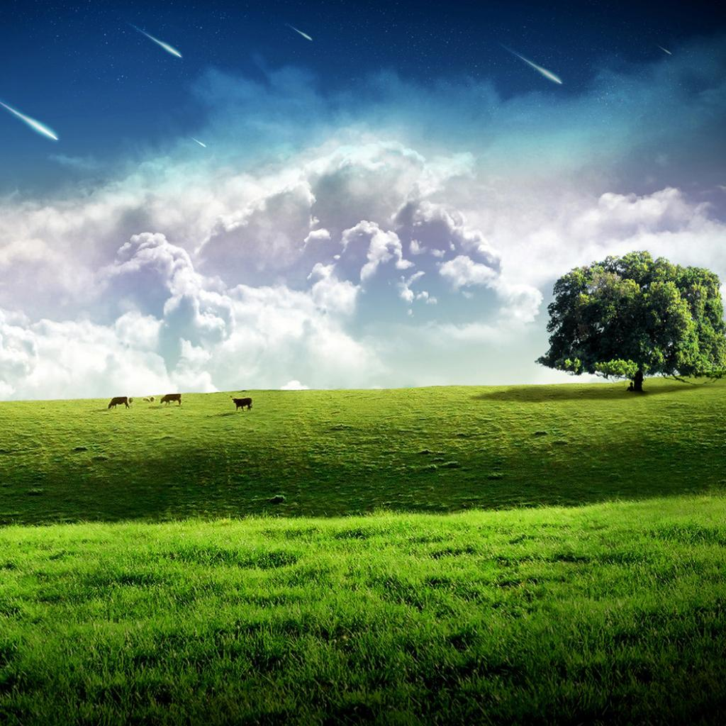 http://4.bp.blogspot.com/-rq7qXyLxkRY/UEvTfQ3wuyI/AAAAAAAAADo/fEyl382_xN4/s1600/hinh-nen-ipad-wallpaper-dream-world-field-sky.jpg