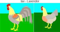 lav-lavender.jpg
