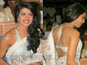 Saree Blouse Designs 2011 pictures