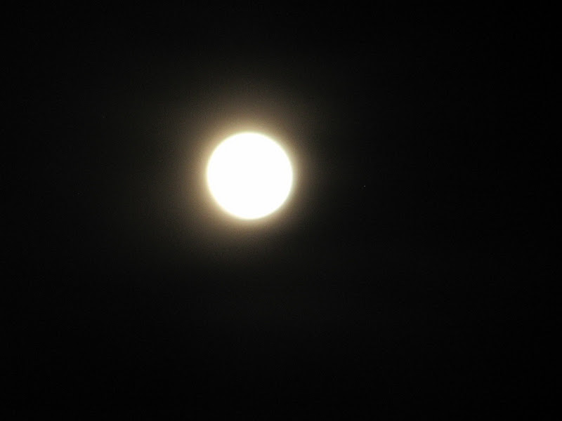 El blog de ma im genes y textos de ma la luna de d a y - El balcon de la luna ...