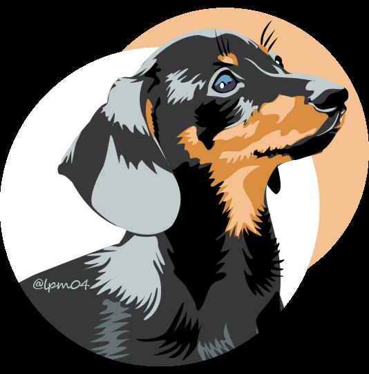 dachshund dog vector art illustration